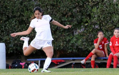 Bishop Amat girls soccer stars shine on and off the field