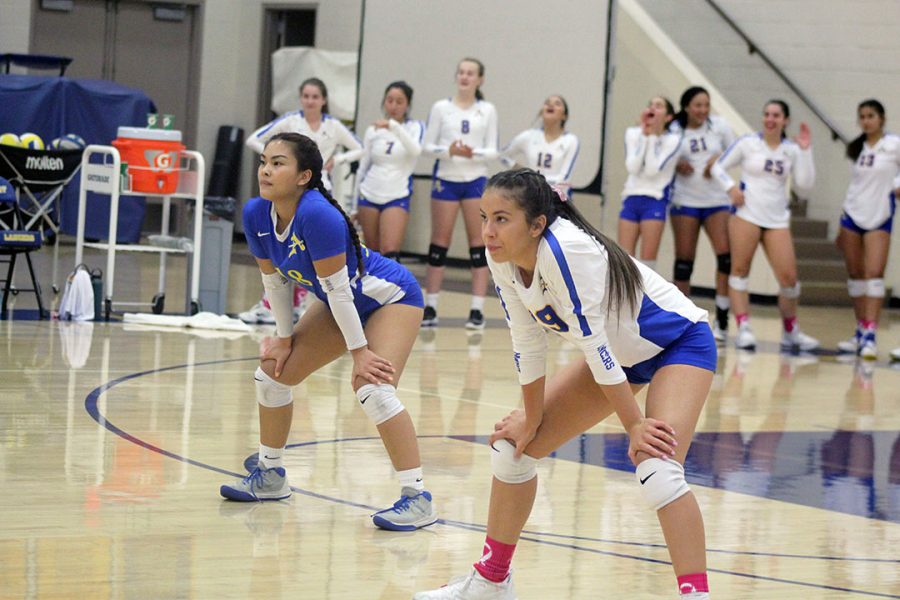Lady Lancers fall to Chaminade in Round 1 of CIF Playoffs